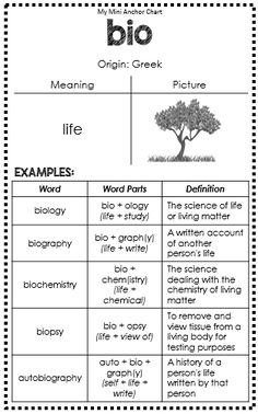Greek and Latin Roots Anchor Charts - bio - great for interactive journals