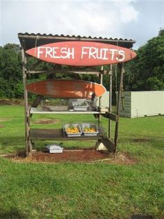 Fruit: Backroads with farm stands