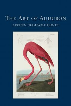 The Art of Audubon 16 frameable prints