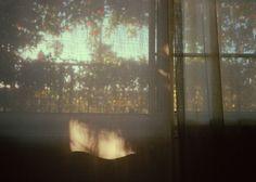 closed curtain. Un lieu a deux survivance, une physique et une métaphysique. La lumière crée l'espace