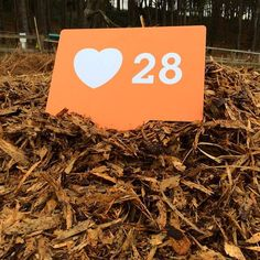 Missed the woodchip in your pants? Our 28 adventures have stocked up for a new season! #LoveAdventure