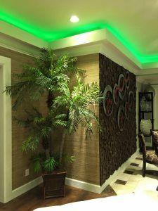 Pro #550226 | OC builder | Garden grove, CA 92843 Oc, Garden, Garten, Lawn And Garden, Gardens, Gardening, Outdoor, Yard, Tuin