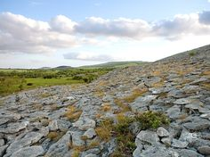 """Meaning """"great rock"""" in Irish, the Burren is precisely that: nearly 100 square miles of karst, a landscape formed from the erosion and dissolution of sedimentary rock. The Burren has limestone that formed 350 million years ago in tropical seas, rare species of Irish plants and animals, and a network of sea cliffs popular with rock climbers."""