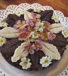 Crystallised primrose and primula edible flowers. Easter cake made at Maddocks Farm Organics.