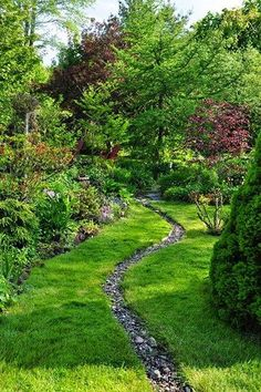 Here is a great example of how you can do so much with so little. Tend to your garden, liven it up with some colorful plants and lush trees, and dig a narrow trench to fill with rocks for your dry creek river. Simple, effective, and unique. Large Backyard Landscaping, Garden Design, Yard Drainage, River Rock Landscaping, Hardscape, Dry Creek, Backyard Landscaping, Rain Garden, Landscape