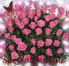 Special for you - animated gif Flowers Gif, Beautiful Rose Flowers, Flowers For You, Beautiful Gif, Beautiful Flowers, Happy Birthday Celebration, Happy Birthday Flower, Happy Birthday Greetings, Morning Rose