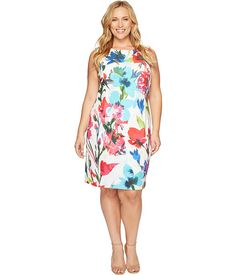 Ellen Tracy Plus Size Printed Shift Dress in Scuba