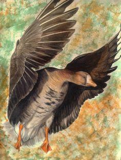 goose by ~rubyeyednorn on deviantART