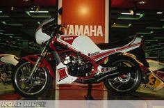 ROAD RIDER: 1982 IFMA YAMAHA RD350LC