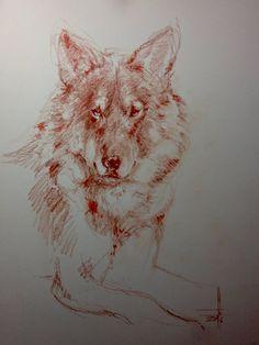 Dibujo de Lobo a sanguina A3