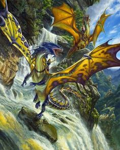 I wanted one of them draggys real bad, and so did Rory, my fab dragon
