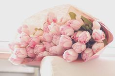Flores, Flowers