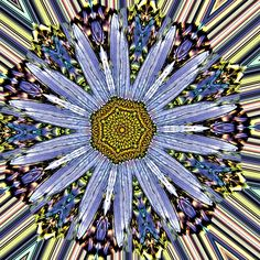 drawing, illustration, digital art abstract mandala flower bloom contrast blue yellow kaleidoscope mirror