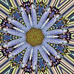 drawing, illustration, digital art abstract mandala flower bloom contrast blue yellow kaleidoscope mirror