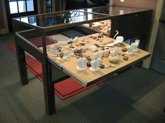 Dark stained pine display case with glass panels and locked access. Slide-out display platform.