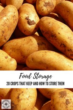 Food Storage: 20 Crops That Keep and How to Store Them - Food storage is my families top priority it always has been and probably always will be.