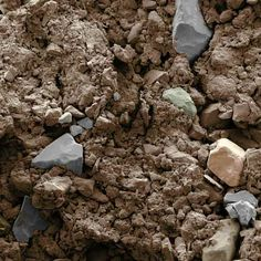 Adding sand to clay soil speeds up drainage, right? The tiny clay… Simply Filling, Clay Soil, Organic Gardening Tips, Wildflower Seeds, Gardening For Beginners, Kids Nutrition, Budget Meals, Compost, Concrete