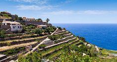 Ihr Guide zu Mallorcas verborgenen Geheimnissen - Alles über Mallorca