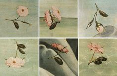 The Birth of Venus (details) Botticelli
