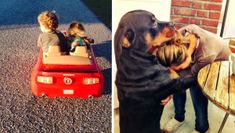 21 Reasons Your Dog Is Truly Your Best Friend