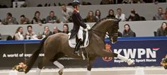 Actualité dressage cheval & équitation : Dressage avec Charlotte Dujardin et Valegro à Londres 2012
