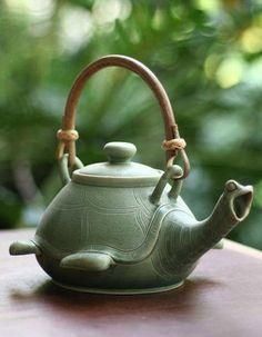 Tortuga!! Turtle Tea
