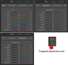 Mastering Color in Lightroom using the HSL Tab