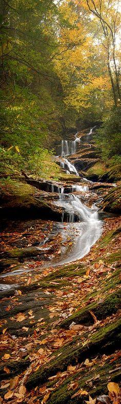 Roaring Fork Falls near Mount Mitchell in North Carolina • photo: Joye Ardyn Durham on FineArtAmerica    Fall, Autumn photos