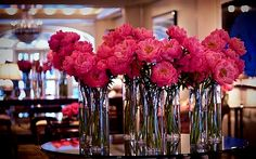 I'm officially obsessed with peonies