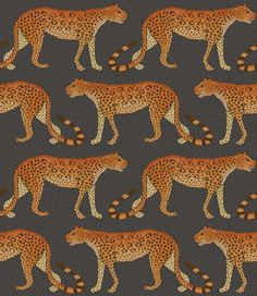 This eye-catching Leopard Walk Wallpaper is a simple yet striking design which forms part of Cole & Son's Ardmore Collection. It features leopards marching left and right across this wallpaper Leopard Wallpaper, Orange Wallpaper, Luxury Wallpaper, Wallpaper Roll, Designer Wallpaper, Pattern Wallpaper, Quirky Wallpaper, Leaves Wallpaper, Painting Wallpaper