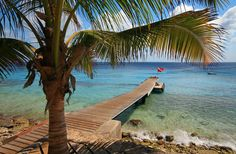 Curacao - Discover the Caribbean