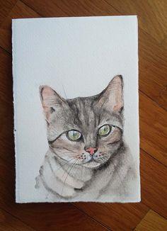 Gattino - acquerello
