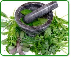 Great herb growing info