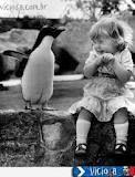 pinguim e menina