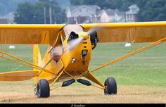 Piper Cub Taxiing at the 2012 Sentimental Journey Fly In at Lock Haven,PA. Piper J3 Cub, Microlight Aircraft, Piper Aircraft, Bush Plane, Flying Together, Float Plane, Private Pilot, Vintage Airplanes, Old Barns