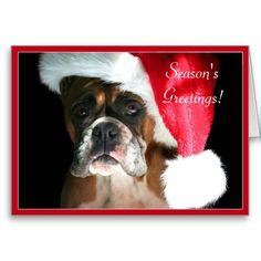 Season's Greetings boxer dog Christmas cards