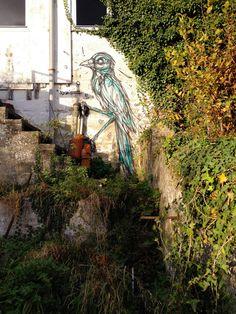 Dzia Krank's amazing world of urban art animals