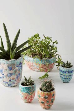 Anthropologie Bismark Mini Garden Potgoodhousemag