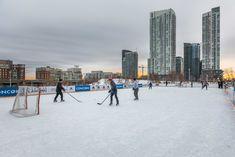 Toronto Views's albums Visit Toronto, Downtown Toronto, Toronto Winter, Outdoor Skating, Winter Snow, Ice Skating, Cn Tower, Skate, New York Skyline