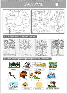 Mes fiches d'exercice sur l'automne ainsi que l'évaluation : … My exercise sheets on the fall as well as the Maternelle Grande Section, French Classroom, Astro, French Immersion, Autumn Art, Science And Nature, Kindergarten, Preschool, Language