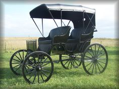 "Justin Horse Buggy, Carriage, Sleigh and Stagecoach Company offers a standard ""Ford package"" with this, a great, fair, low price -comes in any color you want, if, you want black."