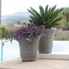 Belham Living Kambree Wicker Round Tapered Planter - Set of 2 | from hayneedle.com
