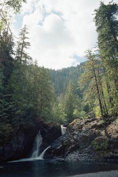 Via natureac http://natureac.tumblr.com/post/128695975163/nature-blog