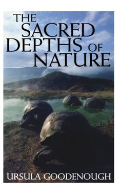 The Sacred Depths of Nature by Ursula Goodenough. Makes an important contribution to the ongoing dialog between science and religion, http://www.amazon.com/dp/0195136292/ref=cm_sw_r_pi_dp_Nz6Twb194A6P8
