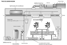 co2 in grow room - Google Search