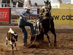 Diferencias y Similitudes del Rodeo Americano y Rodeo Colombiano - TvAgr...