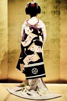 Beautiful Obi...