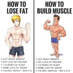 HOW TO LOSE FAT AND BUILD MUSCLE! Whether you're trying to lose fat build muscle get toned or increase strength levels your nutrition will account for the vast majority of your results. Losing fat will require you burn more calories than you consume ea Fitness Workouts, Fitness Motivation, Gym Workout Tips, Weight Training Workouts, Daily Motivation, Workout Men, Daily Workouts, Workout Routines, Workout Plans