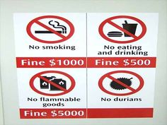Smelly Durian Fruit - Banned on the Singapore Metro and Hotels! Post about Stinky Smelly Asian Tropical Durian Fruit Singapore Island, Singapore Travel, Weird Laws, Thailand Tourism, Web Design, Chewing Gum, Chiang Mai, Cooking Classes, Funny Signs