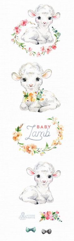 Baby Lamb. Watercolor little animals clipart Farm country | Etsy